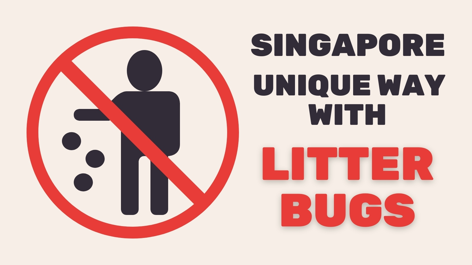 no littering in singapore